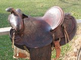 New Saddle That Was Given To Us