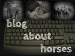 Goals For 2015 - Blog About Horses More!