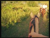 Trail Riding At Pierce Creek Recreation Area, Essex, Iowa