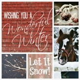 Have A Wonderful Winter!
