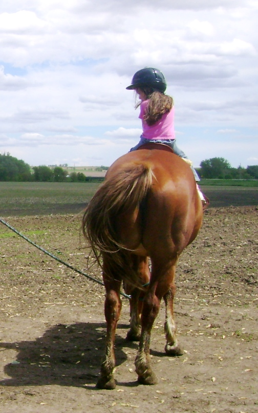 Horse Safety for Kids