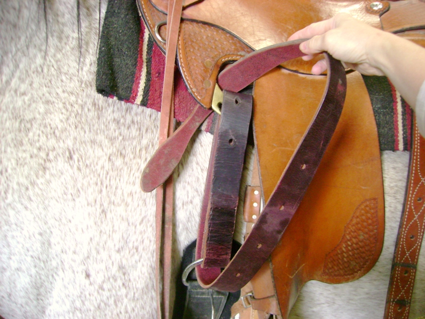 Western Rigging On A Saddle