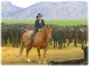 Karmen's Horse Challis