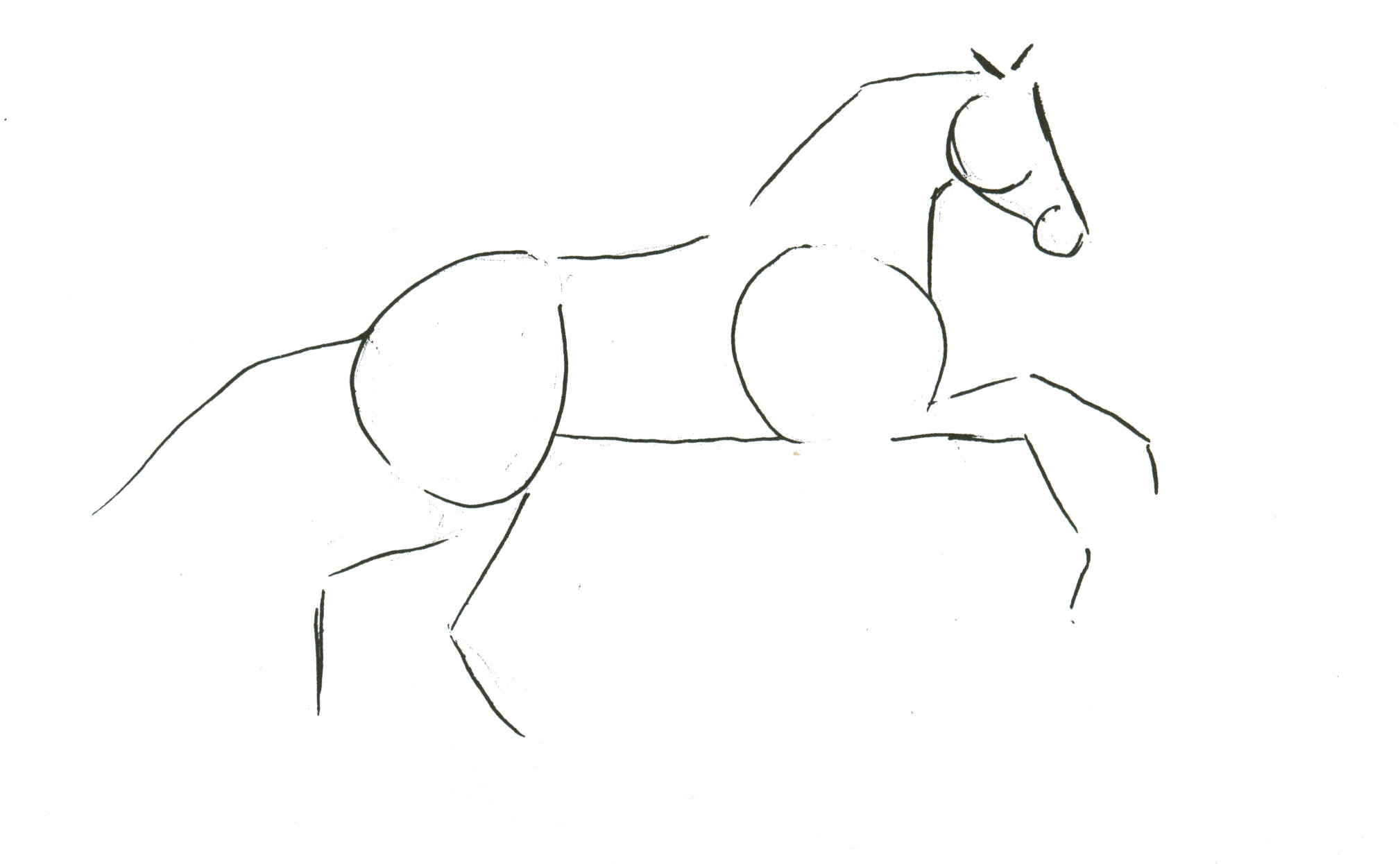 Sketching A Horse – How To Draw Horses How To Draw A Train For Kids Step By Step