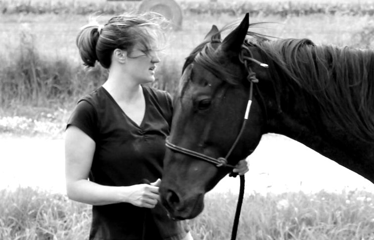 Horse Training Blog - Working With Horses