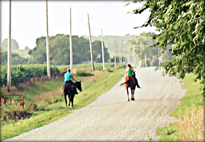 Riding Horses on a Gravel Road