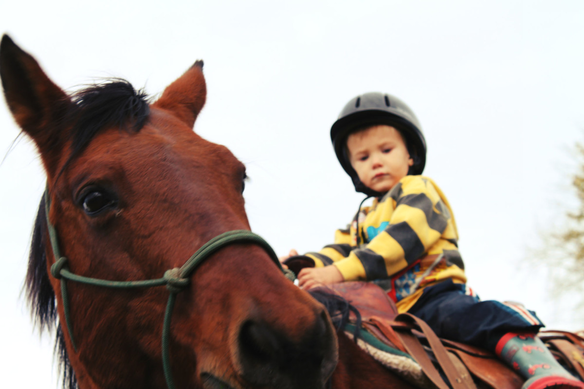 Little Jack, riding Red