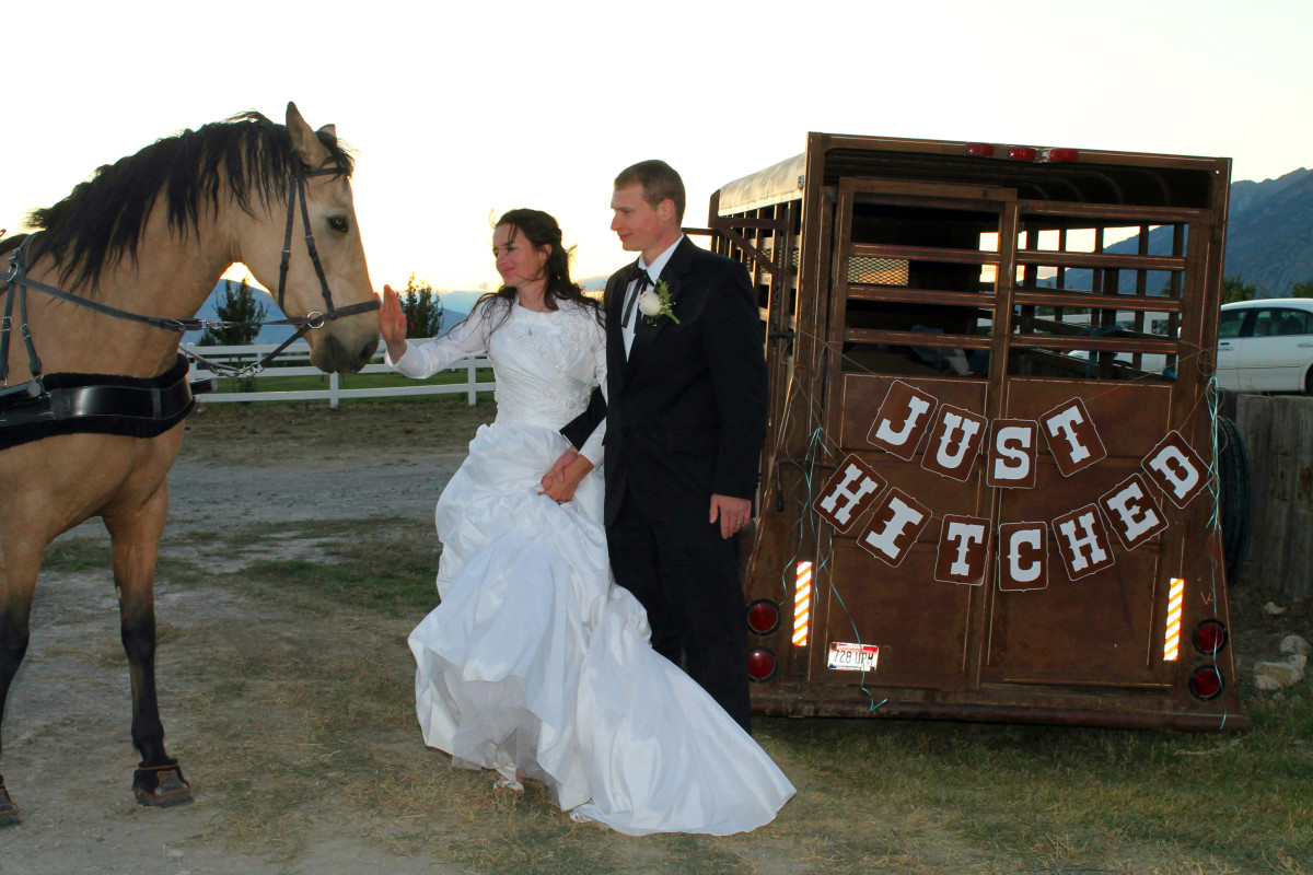 Just Hitched